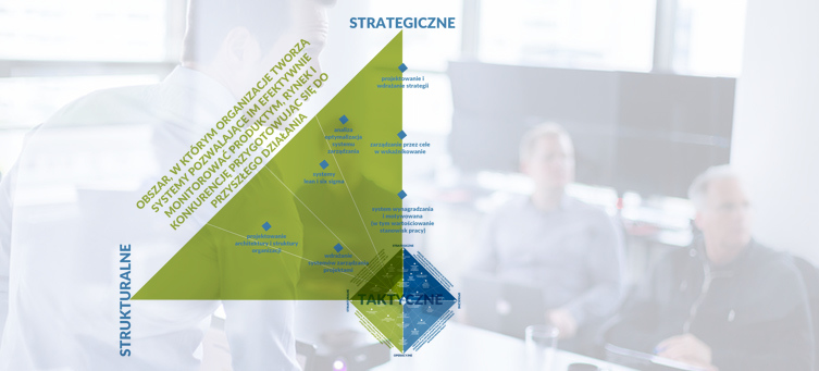 Organization Learning Systems - Szkolenia strategiczno strukturalne