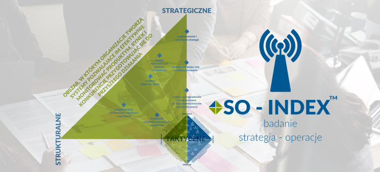 Organization Learning Systems - SO-INDEX - badanie strategia operacje